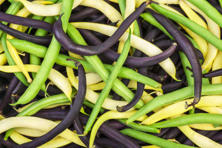 Abstract background: mix of green, yellow and black wax beans Stock Photo - 14296565