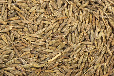 Abstract background  Spices  zeera seeds photo