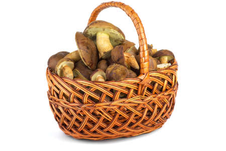 Wicker basket with cepe mushrooms on the white background