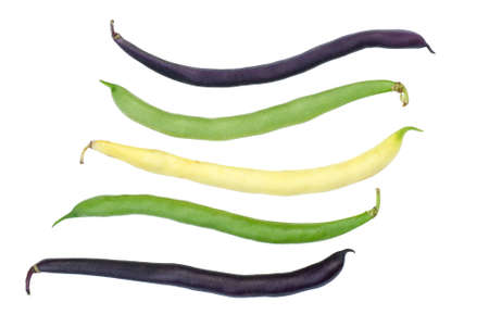 Purple, green and yellow Wax Snap Beans photo