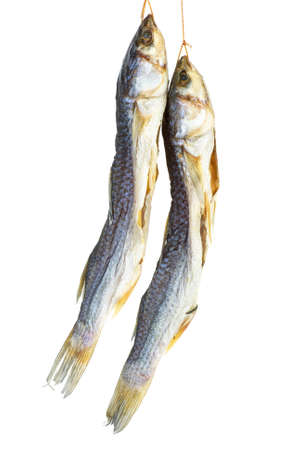 mullet: Salted mullet fishes