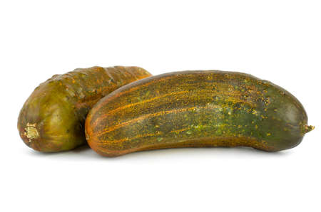 overripe: Two overripe cucumbers isolated on the white background