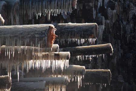 Frozen Logs Close Up