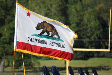 california flag: California Flag