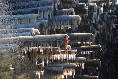 logs: Frozen Logs Stock Photo