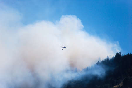 forest fire: Forest Fire  Foto de archivo