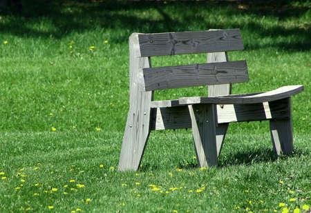 warped: old warped wooden park bench