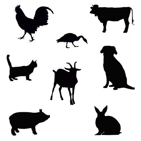 animal silhouette: collection of farm animal silhouettes isolated on white Stock Photo