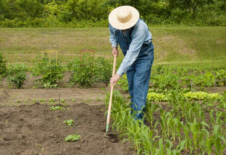 man using a hoe to weed his large garden