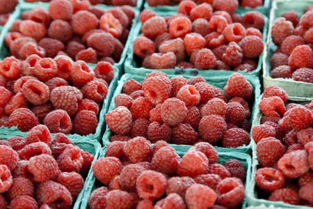 numerous containers of raspberries at a local farmers market