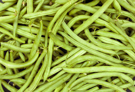 greenbeans: a pile of picked greenbeans for background use Stock Photo