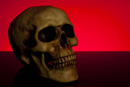 human skull portrait on orange background great for halloween Stock Photo