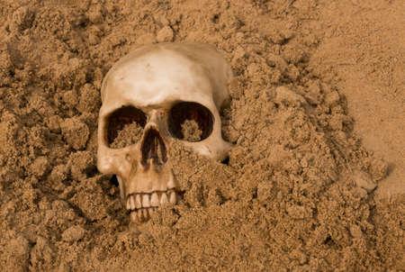 human skeleton: small human skull half buried in the desert sand