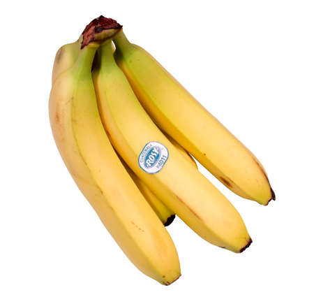 RIVER FALLS,WISCONSIN-APRIL18, 2014: A bunch of Rosy brand bananas. Rosy bananas are a product from Guatemala,South America.