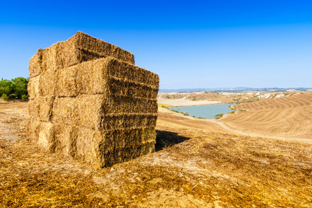 asciano: Straw bales and little lake in summer near Asciano in Crete Senesi, Tuscany, italy Stock Photo