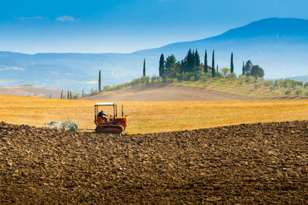 ploughing: ploughing on hills in Crete Senesi near Asciano, Tuscany, Italy