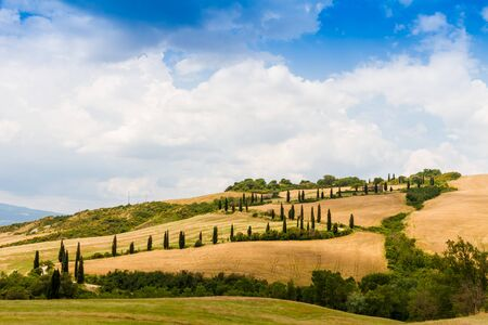 flanked: winding road flanked with cypresses under a cloudy summer sky in crete senesi near Siena in Tuscany, Italy