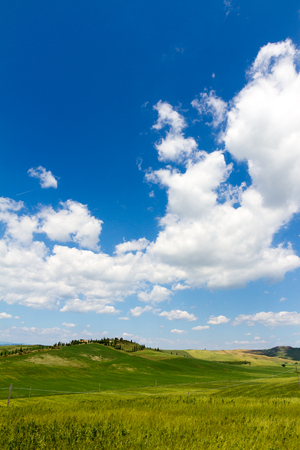 blue sky and fields: Fields in sunny tuscan countryside Italy