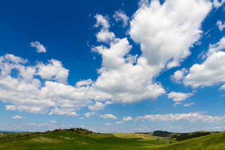 asciano: Fields in sunny tuscan countryside, Italy