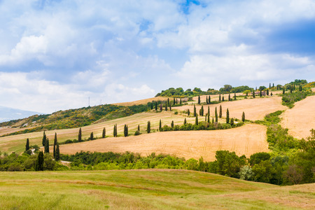 winding road flanked with cypresses under a cloudy summer sky in crete senesi near Siena in Tuscany, Italy