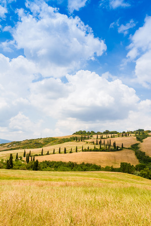 asciano: winding road flanked with cypresses under a cloudy summer sky in crete senesi near Siena in Tuscany, Italy