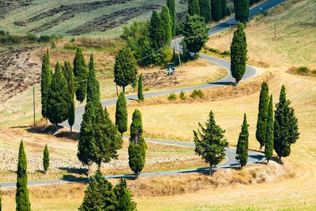 Winding road in summer near Pienza in Tuscany, Italy 版權商用圖片