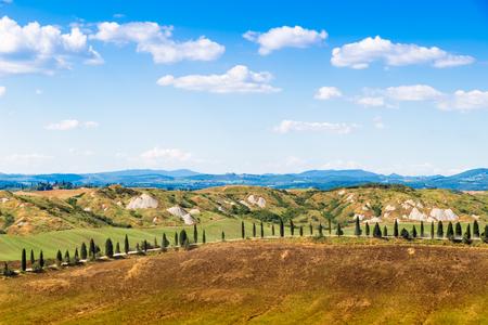 Road and cypresses on a hill near Asciano in Crete Senesi, Tuscany, Italy Stockfoto