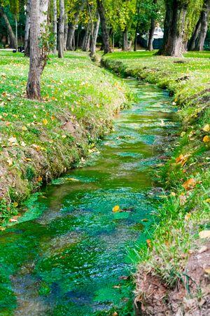 Perugia, Italy - October 06, 2007: Source of the Clitunno near Campello sul Clitunno in fall