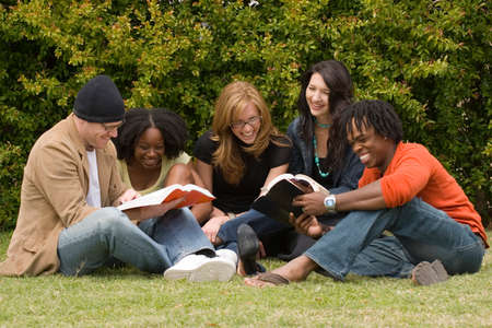 study group: Diverse group of people reading and studying. Stock Photo