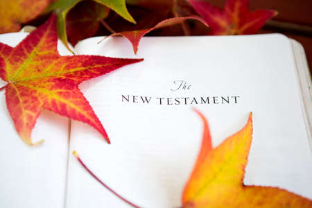 Red fall background with the Bible and leaves.