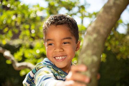 Little boy playing in a tree. Standard-Bild