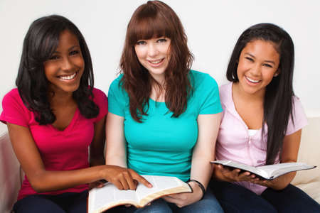 Diverse group of teenagers studing.