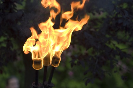 torch light: Medieval fire torch during the Rodemack Festival
