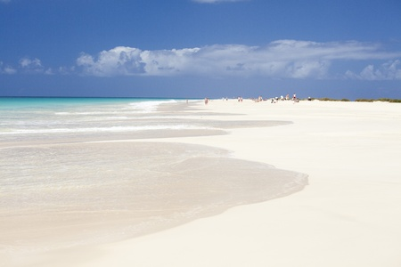 vista: Beautiful endless Santa Monica Beach in Boa Vista island