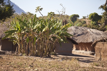 View of  an African village with small huts photo