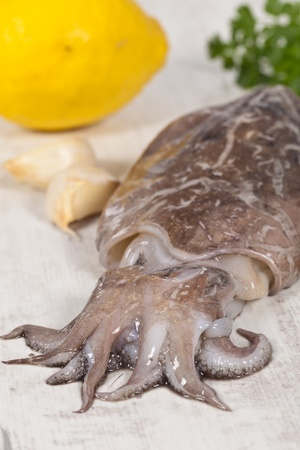 Fresh raw Cuttlefish ready to be cooked