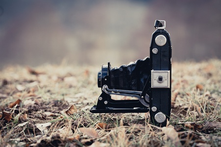 folding camera: Beautiful old folding camera in a vintage stile
