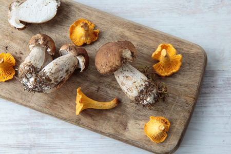 cepe: Mix of edible mushrooms on a chopping board Stock Photo