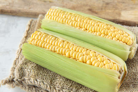 corncob: Fresh raw corncob on jute cloth