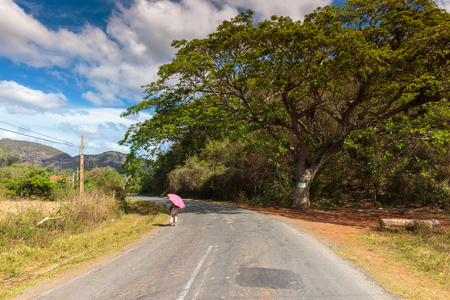 peacefull: Lady with umbrella in Vinales valley in the north of Cuba Stock Photo