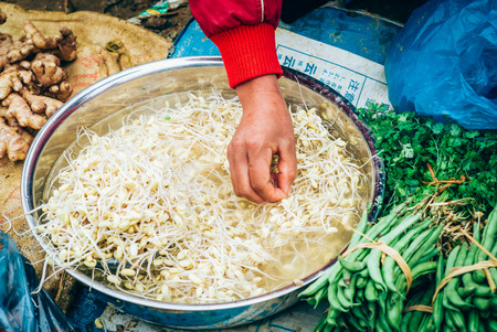 cau: Fresh bean sprouts on sale at the Can Cau market in Vietnam