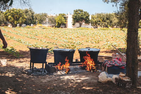 The traditional preparation of the tomato sauce in the south of italy, Puglia Imagens