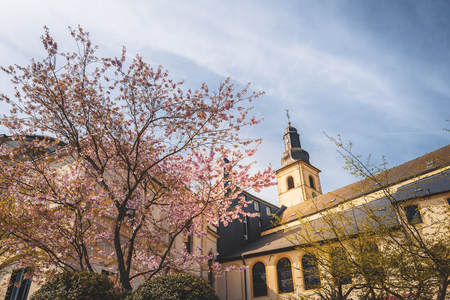 Spring season all around the city of Luxembourg