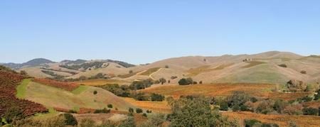 Napa Valley photo