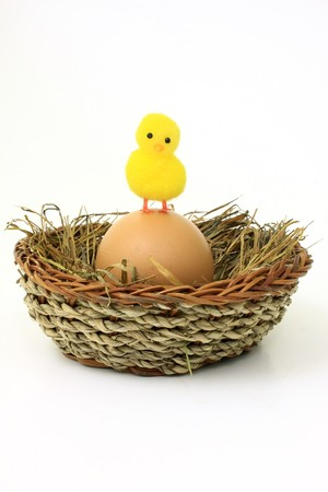 A cute chick standing in a eastern egg photo