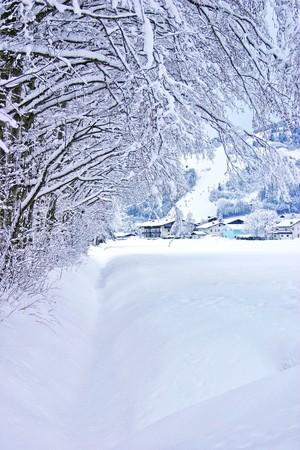 月 1 日に非常に雪の風景 写真素材 - 8182982