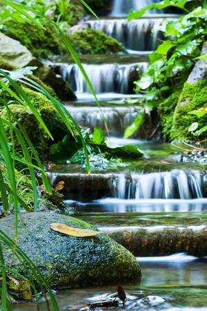 美しいベール滝、苔蒸した岩 写真素材