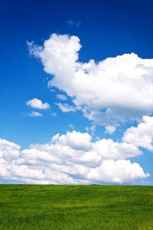 A beautiful green field with white clouds Stock Photo