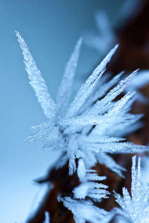 very cold: Ice crystals on a very cold winter day Stock Photo
