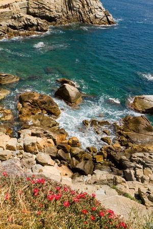 Typical Costa Brava landscape  in Spain  photo